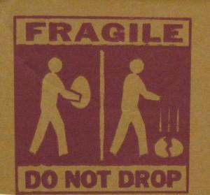 Don't drop big eggs. Photo by Tui Cameron