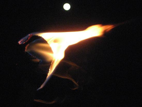 Moon flame. Photo by Tui Cameron