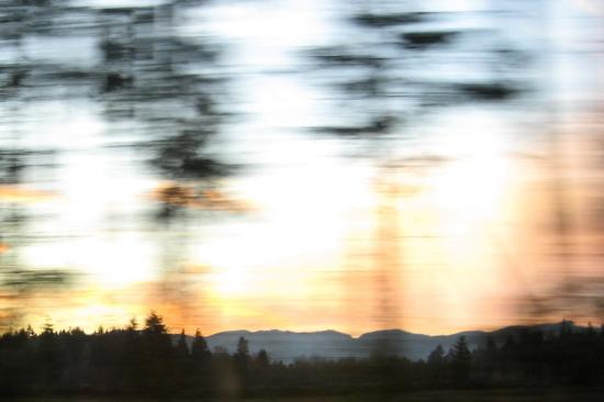 Staring out a car window triggers my imagination. (photo by Tui Cameron)