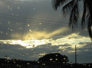 Tear streaked Florida skies. (photo by Tui Cameron)