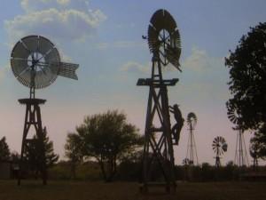 Windmill Farm, Granbury, TX (photo by Tui Cameron)