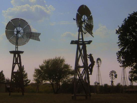 Windmill Farm, Granbury, TX (photo by Tui Cameron)