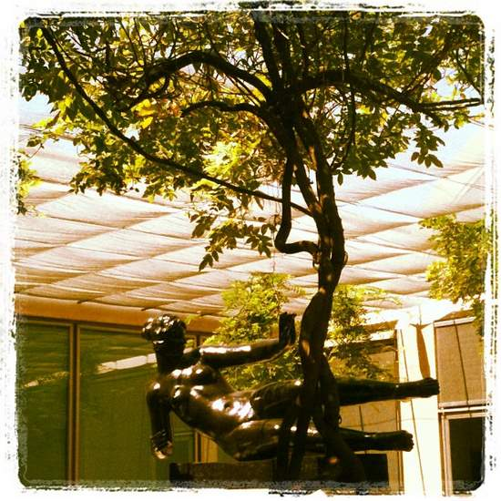 Kimbell Art Museum courtyard. (photo by Tui Snider)