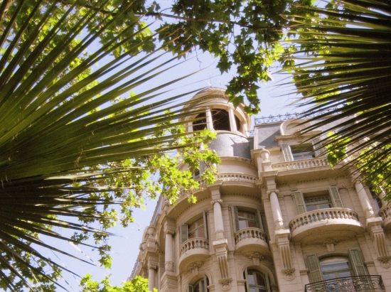 Building framed through palm fronds in Barcelona. (photo by Tui Snider)