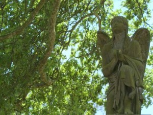 An angel at Kensal Green Cemetery peers through the trees. (photo by Tui Snider)