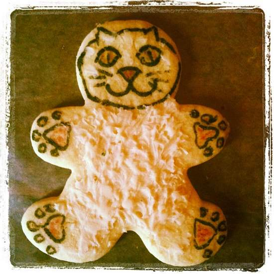 Cat astronaut sugar cookie. (photo by Tui Snider)