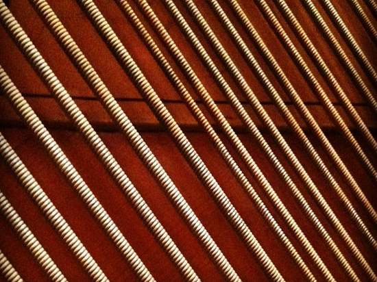 Piano strings - lower register. (photo by Tui Snider)