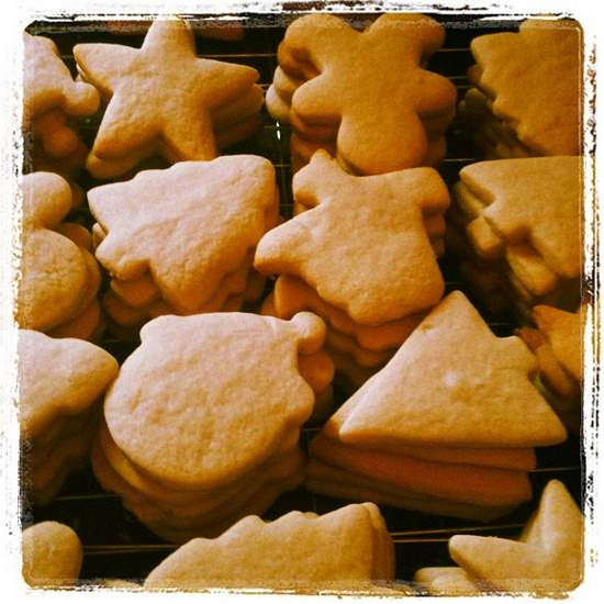 Unfrosted sugar cookies. (photo by Tui Snider)