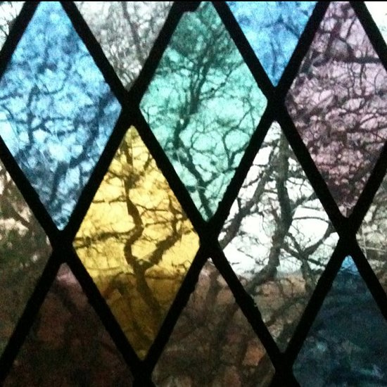 Oak trees through stained glass. (photo by Tui Snider)