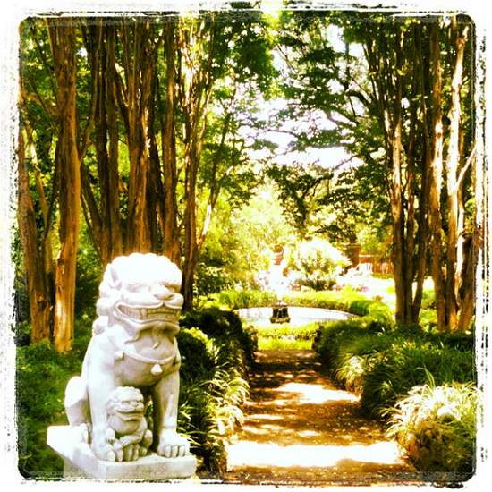 Lion statue at Chandor Gardens in Weatherford, Texas (photo by Tui Snider)