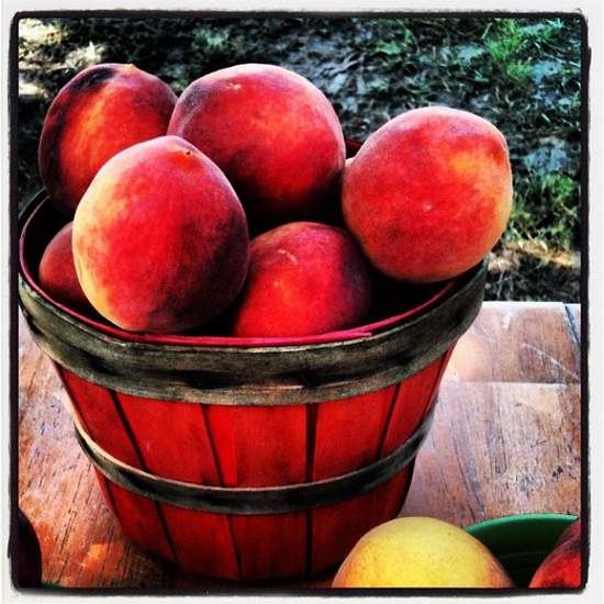 Parker County peaches from Weatherford, TX (photo by Tui Snider)