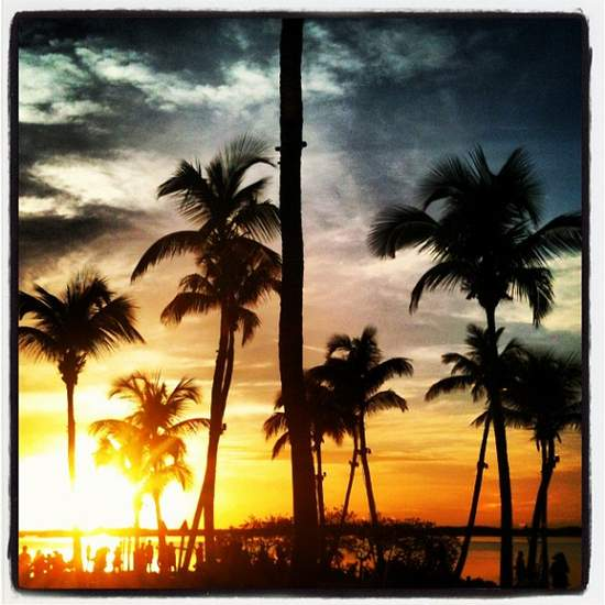 Sunset & palm trees along the Florida Keys (photo by Tui Snider)