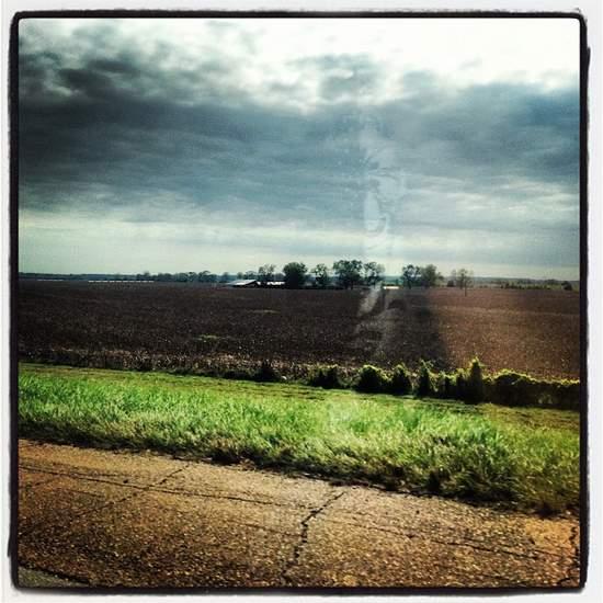 Louisiana landscape road trip (photo by Tui Snider)