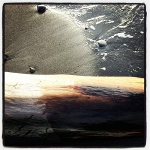 Lummi Island, WA beach (photo by Tui Snider)
