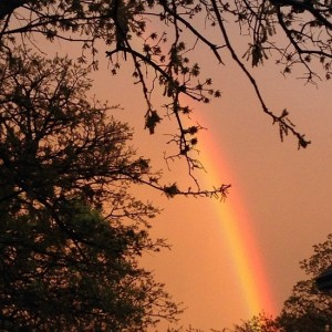 Yellow sky with rainbow (photo by Tui Snider)