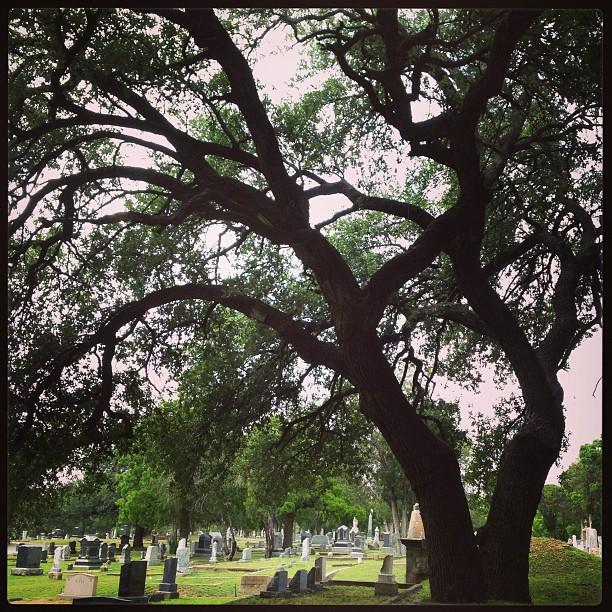 Historic Greenwood Cemetery in Weatherford, Texas is the final resting place for many US veterans.