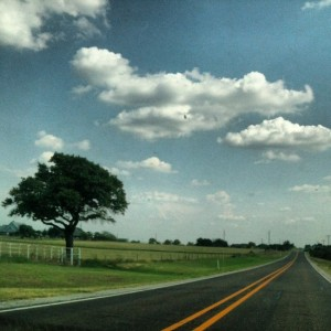 I love road trips! (photo by Tui Snider)