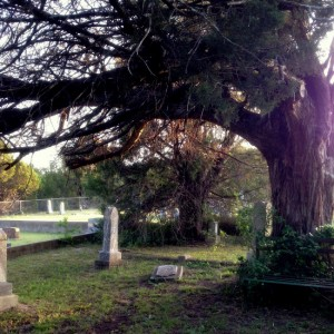 Historic Veal Station Cemetery in Springtown, Texas (photo by Tui Snider)