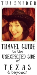 Tui Snider - Travel Guide to the Unexpected Side