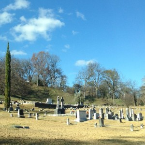 Cemetery with cypress tree (photo by Tui Snider)