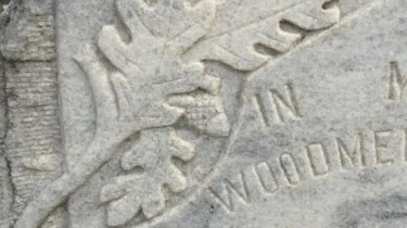 Oak leaf & acorn on a historic cemetery headstone (photo by Tui Snider)