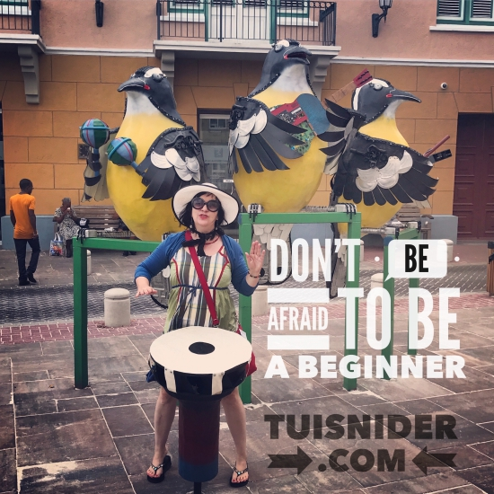 Are you afraid to begin? (graphic by Tui Snider)
