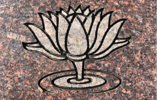 Understanding cemetery symbols what does a lotus flower represent c tui snider water lily aka lotus flower mightylinksfo