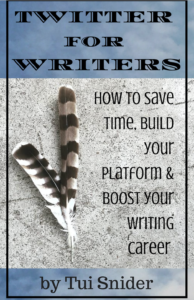 Twitter for Writers by Tui Snider