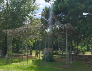 Unique chain link grave covering in East Texas. photo (c) Tui Snider